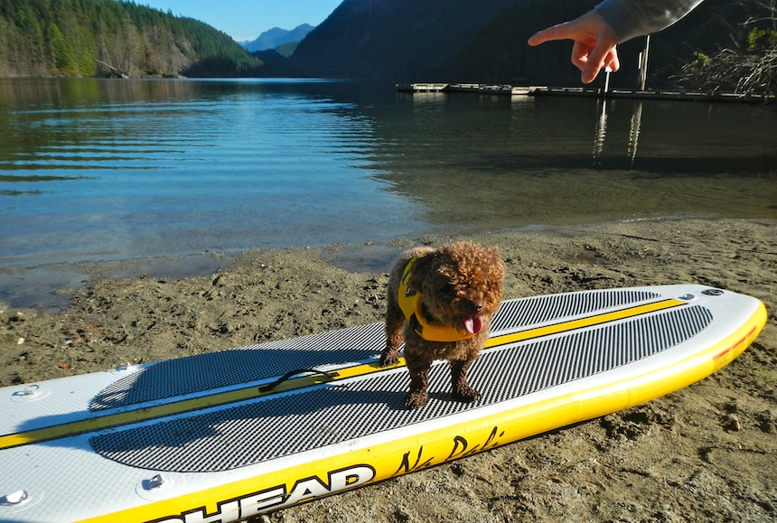 teaching Seth to stay on stand up paddleboard