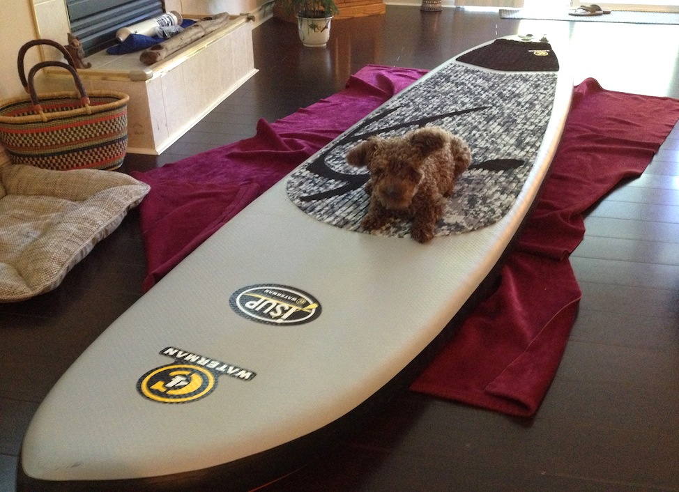 teaching Seth to get comfortable on SUP