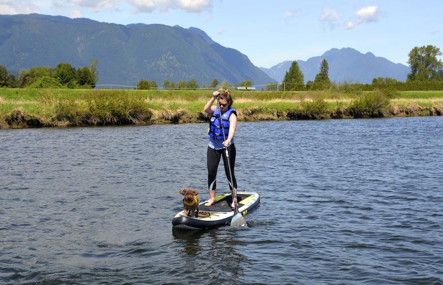 Isle SUP paddle