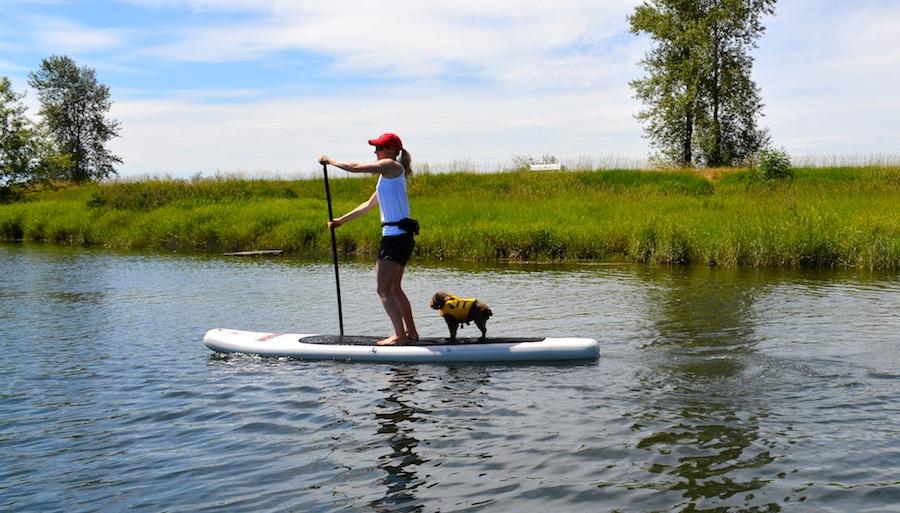 Allison and Seth paddle boarding