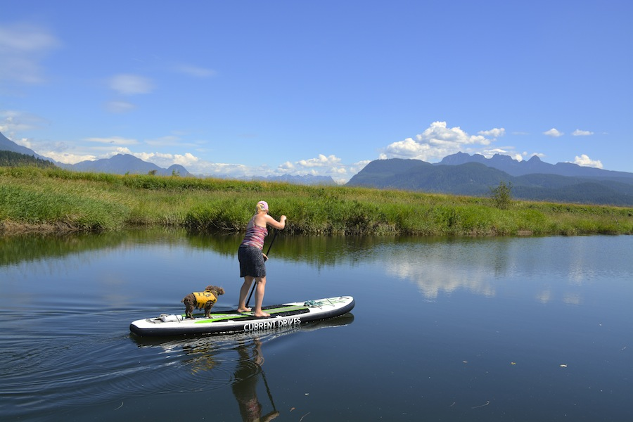 paddling the Current Drives inflatable SUP