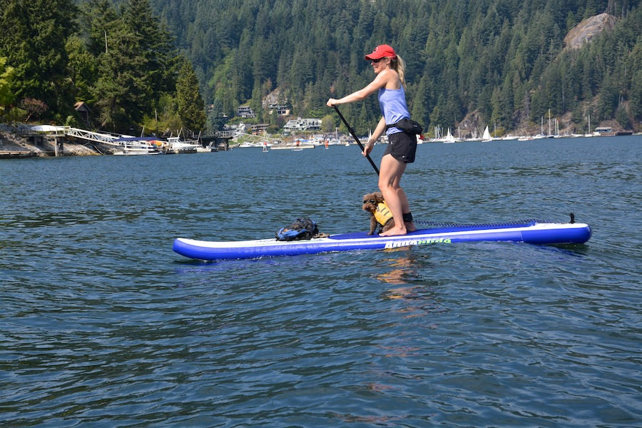 paddling in Deep Cove - board from Deep Cove Outfitters