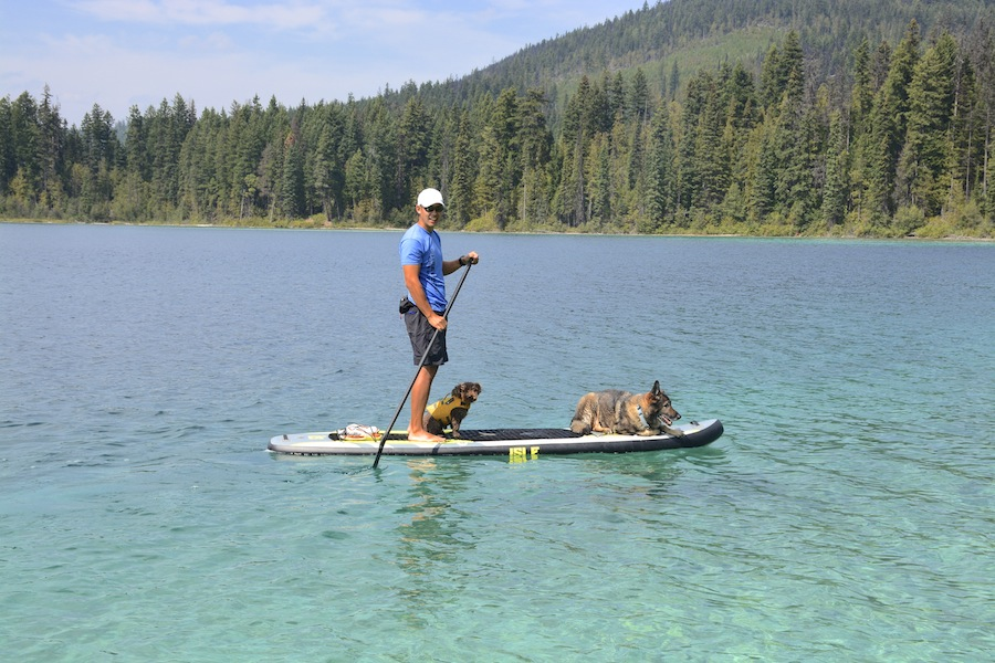 SUP with dogs Isle Explorer
