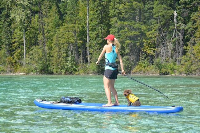 Canoeing and kayaking in southwestern British Columbia The Vancouver paddler