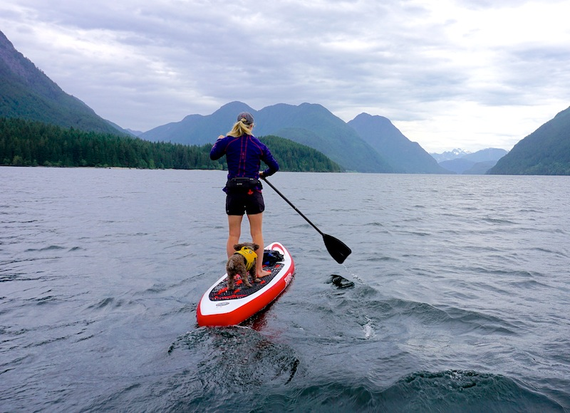 "paddling the White Shark 10'6"" inflatable SUP on Allouette Lake"