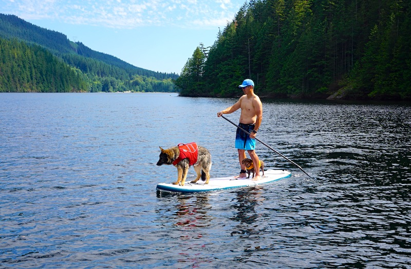 paddle boarding with dogs Lokahi WE