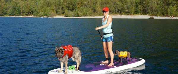 Best SUP's For Paddling With Dogs