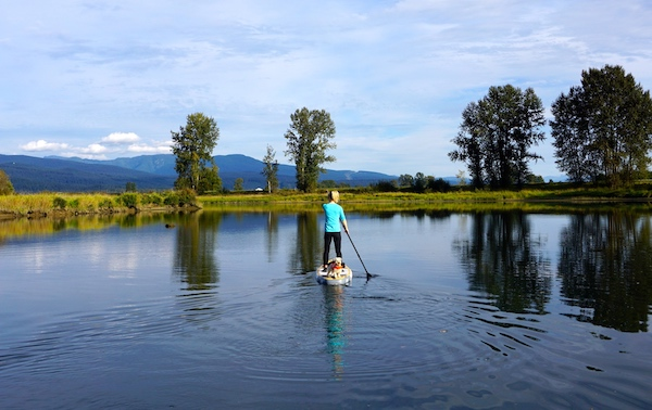 paddling the WaterWalker inflatable SUP